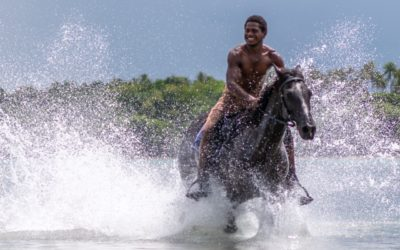 Horse Riding Like You've Never Experienced Before, Only On Ratua