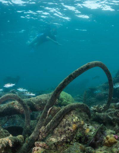 scuba-diving-3